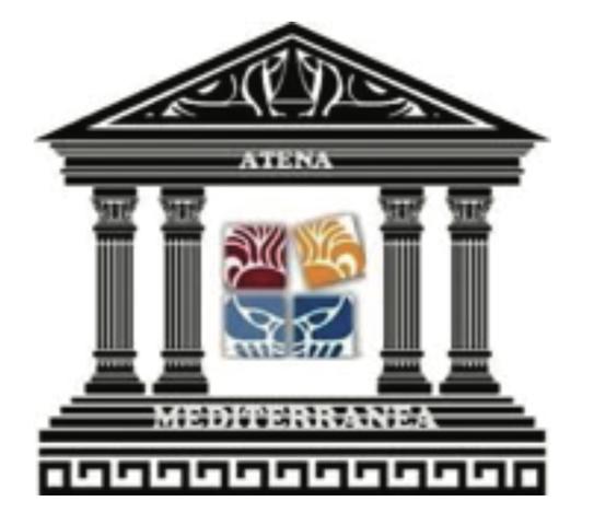 consiglio-nazione-giovani-atenamediterranea